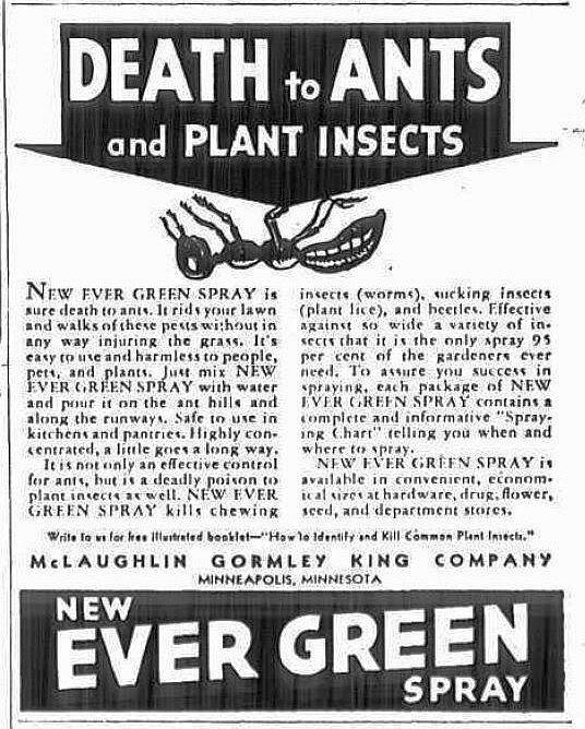 evergreen adv