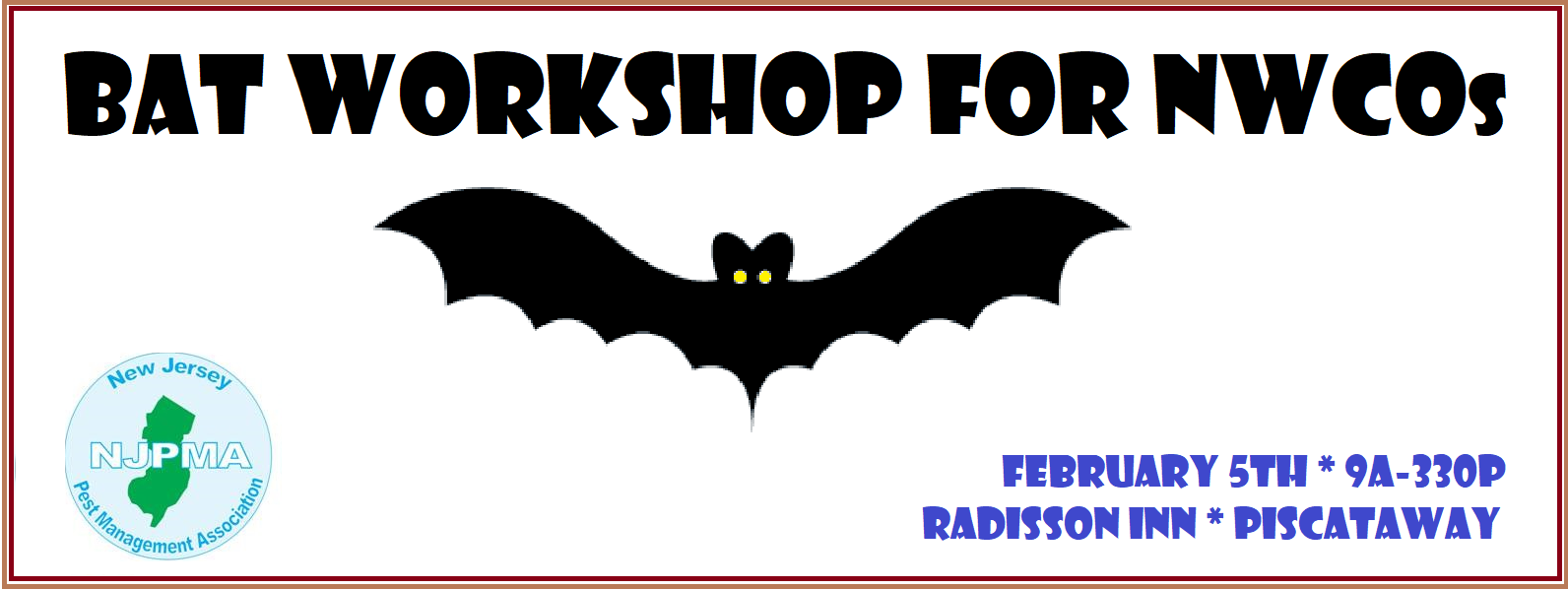 bat workshop