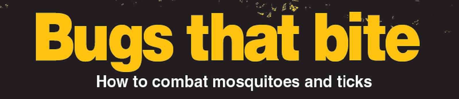 bugs that bite banner2