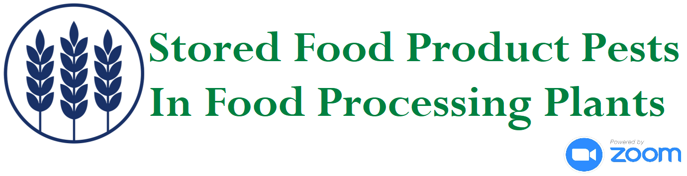 food-processing-icon-29