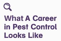 Pest Control Career